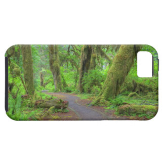 USA, Washington, Olympic National Park, Hoh Rain iPhone 5 Covers