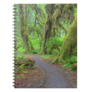 USA, Washington, Olympic National Park, Hoh Rain Notebooks