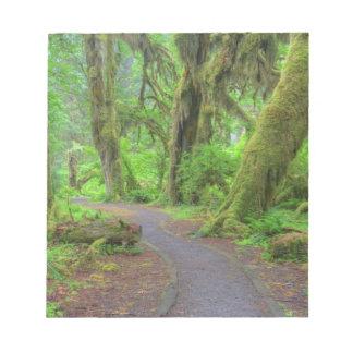 USA, Washington, Olympic National Park, Hoh Rain Notepad