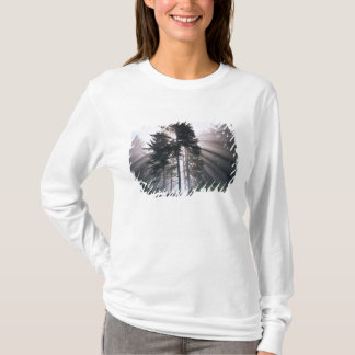 USA, Washington, Olympic National Park, Morning T-Shirt