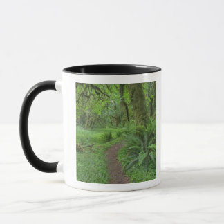 USA, Washington, Olympic National Park, Mug