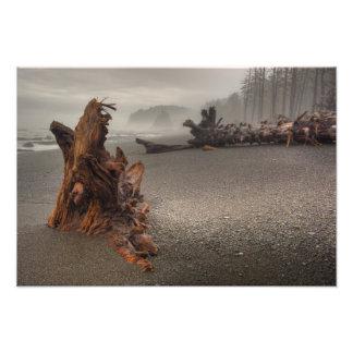 USA, Washington, Olympic National Park, Rialto 2 Photographic Print