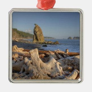 USA, Washington, Olympic National Park, Rialto Christmas Ornament
