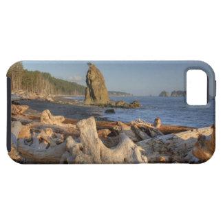 USA, Washington, Olympic National Park, Rialto iPhone 5 Covers
