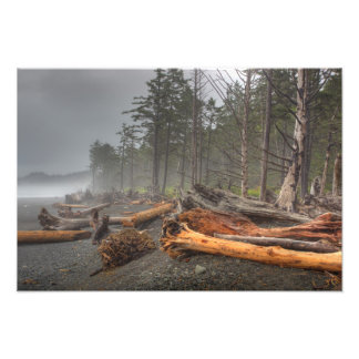 USA, Washington, Olympic National Park, Rialto Photographic Print