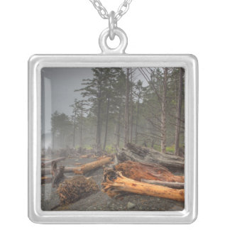 USA, Washington, Olympic National Park, Rialto Silver Plated Necklace