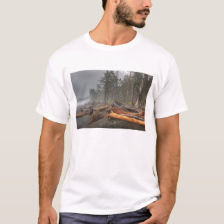 USA, Washington, Olympic National Park, Rialto T-Shirt