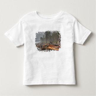USA, Washington, Olympic National Park, Rialto Toddler T-Shirt