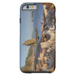 USA, Washington, Olympic National Park, Rialto Tough iPhone 6 Case