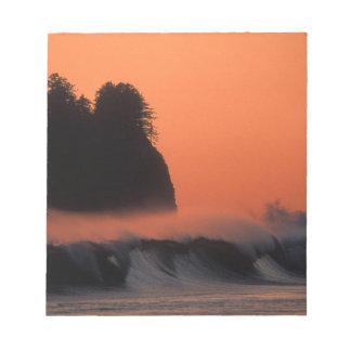 USA, Washington, Olympic National Park, Sea Notepad