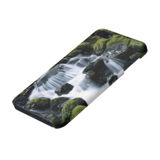 USA, Washington, Olympic National Park, Sol iPod Touch 5G Case