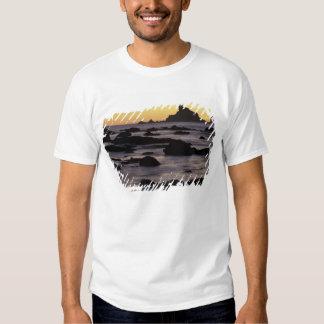 USA, Washington, Olympic Nat'l Park, Seastacks T-shirts