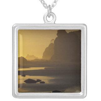 USA, Washington, Olympic Nat'l Park, Sunset, Silver Plated Necklace