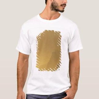 USA, Washington, Olympic Nat'l Park, Sunset, T-Shirt