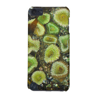 USA, Washington, Olympic Peninsula 4 iPod Touch (5th Generation) Cover