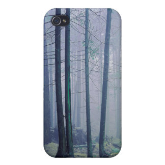 USA, Washington, Orcas Island, Moran State Park Cover For iPhone 4