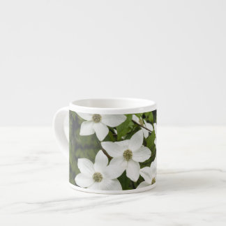 USA, Washington, Pacific Dogwood, Cornus Espresso Cup