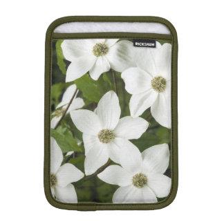USA, Washington, Pacific Dogwood, Cornus iPad Mini Sleeve