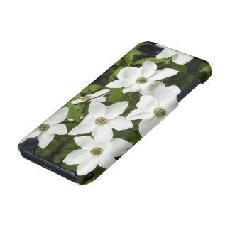 USA, Washington, Pacific Dogwood, Cornus iPod Touch (5th Generation) Cases