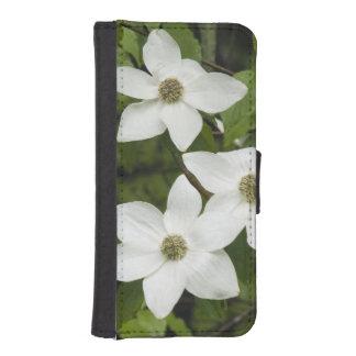 USA, Washington, Pacific Dogwood, Cornus iPhone 5 Wallet Cases