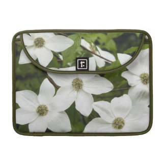 USA, Washington, Pacific Dogwood, Cornus Sleeve For MacBooks