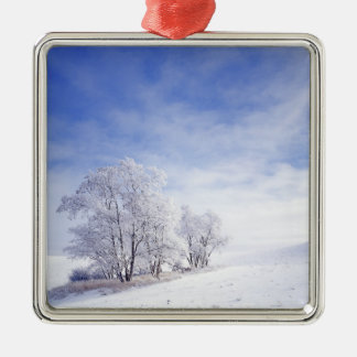 USA, Washington, Palouse Area, Frosted Black Christmas Ornament