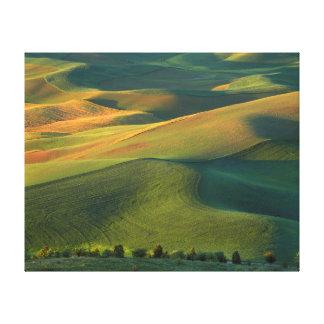 USA, Washington, Palouse, Whitman County 2 Canvas Print