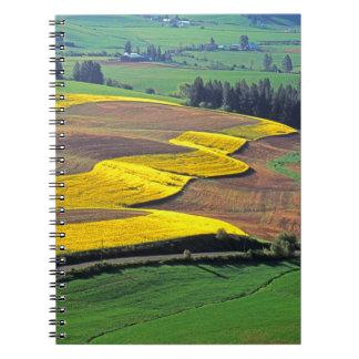 USA, Washington, Palouse, Whitman County 2 Notebook
