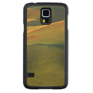 USA, Washington, Palouse, Whitman County Carved Maple Galaxy S5 Case