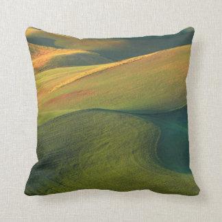 USA, Washington, Palouse, Whitman County Cushion