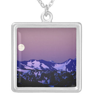 USA, Washington, Port Angeles, Olympic National Silver Plated Necklace