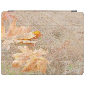 USA, Washington, Quinault. Maple Leaves iPad Cover