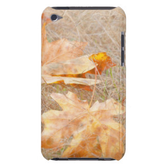 USA, Washington, Quinault. Maple Leaves iPod Touch Case-Mate Case
