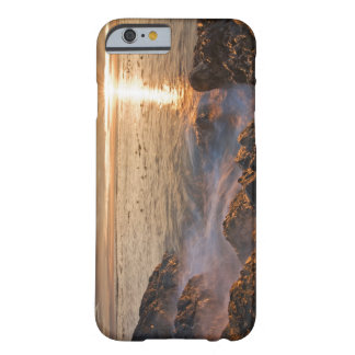 USA, Washington, San Juan Islands.  A dramatic Barely There iPhone 6 Case