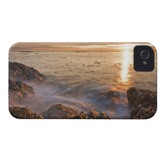 USA, Washington, San Juan Islands.  A dramatic iPhone 4 Case-Mate Case