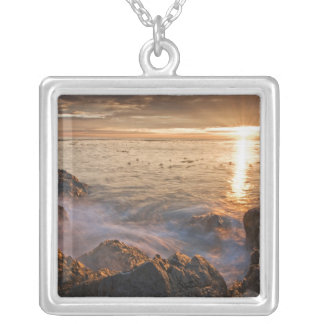 USA, Washington, San Juan Islands.  A dramatic Silver Plated Necklace
