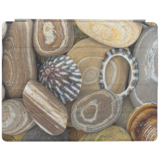 USA, Washington, Seabeck. Close-Up Of Beach iPad Cover