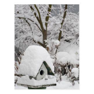 USA, Washington, Seabeck. Close-up of bird house Postcard