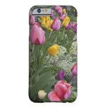 USA, Washington, Seabeck. Tulips line garden
