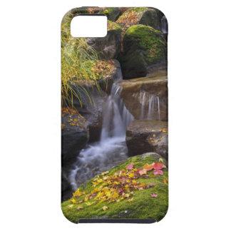 USA, Washington, Seattle Case For The iPhone 5