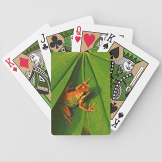 USA, Washington, Seattle, Discovery Park 2 Bicycle Playing Cards