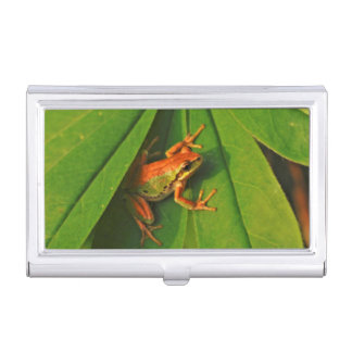 USA, Washington, Seattle, Discovery Park 2 Business Card Holder