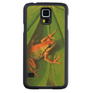 USA, Washington, Seattle, Discovery Park 2 Carved Maple Galaxy S5 Case
