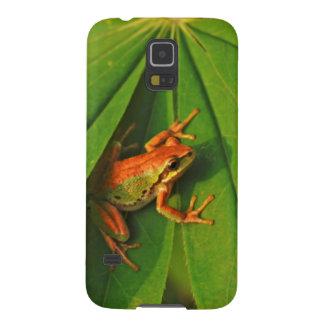 USA, Washington, Seattle, Discovery Park 2 Galaxy S5 Case