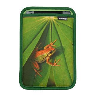 USA, Washington, Seattle, Discovery Park 2 iPad Mini Sleeves