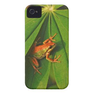 USA, Washington, Seattle, Discovery Park 2 iPhone 4 Case