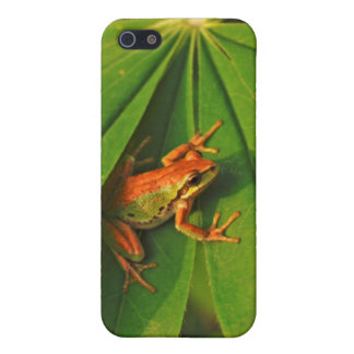 USA, Washington, Seattle, Discovery Park 2 iPhone 5/5S Cases