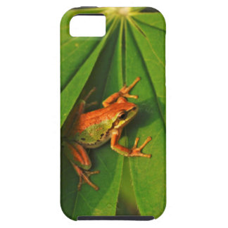 USA, Washington, Seattle, Discovery Park 2 iPhone 5 Case