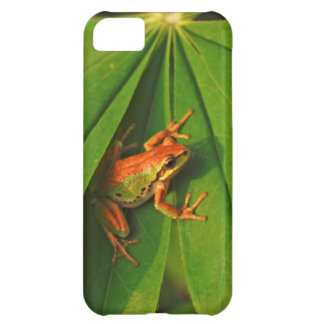 USA, Washington, Seattle, Discovery Park 2 iPhone 5C Case