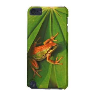 USA, Washington, Seattle, Discovery Park 2 iPod Touch 5G Cover